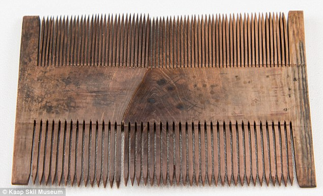 beauty a wooden comb used for grooming had been preserved in the silt