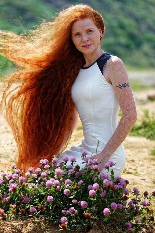 best red hair images on pinterest redheads red hair and red