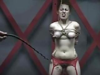 cruel punishment for beauty twat porn tube video