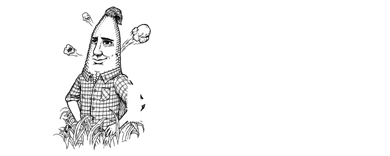 harvest time hoosier popcorn