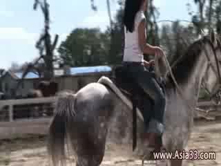 Horse riding porn