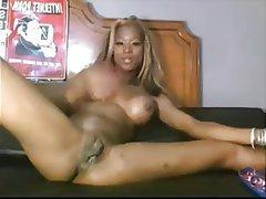 pussy amateur black amateur black real black porn
