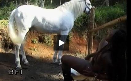 Peliculas porno con cavallos Video Porno Con Animales Con Caballos O Perros Porn Videos Search 1 Megapornx