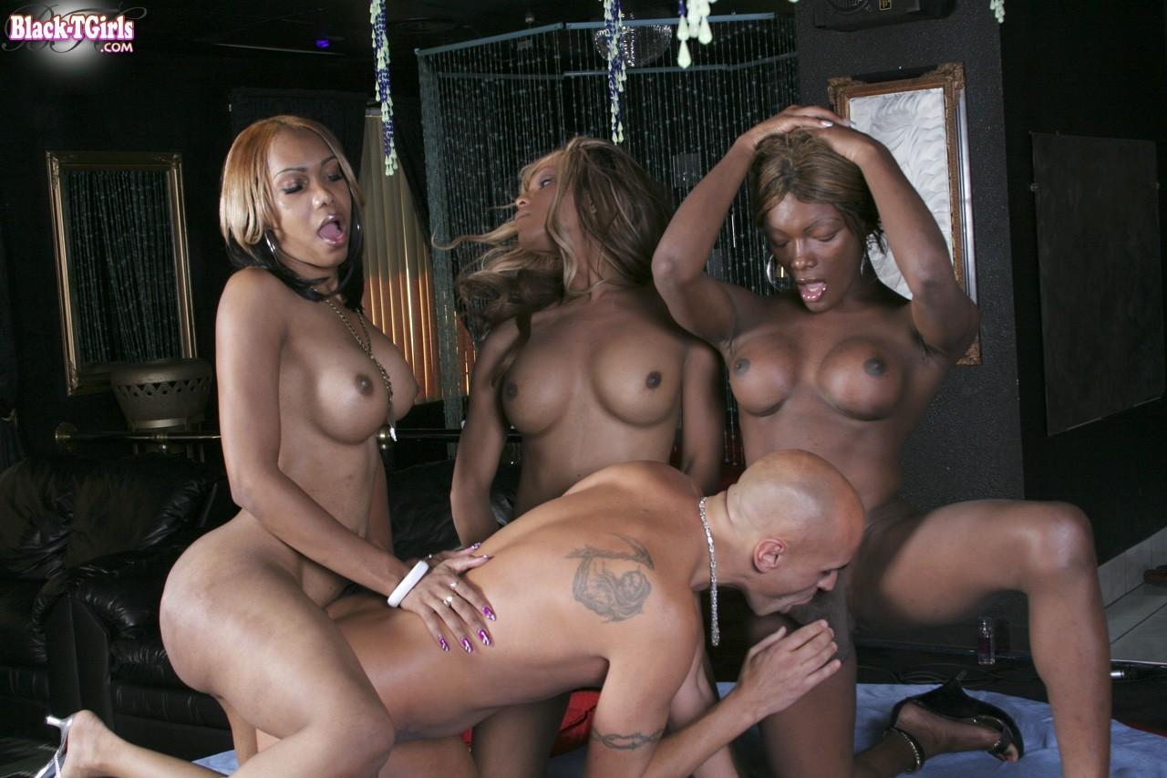 xxx black tranny orgy black tranny orgy attractive black shemales having a wild orgy